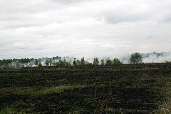 К чему приводит беспечность: пожар вблизи Антоново