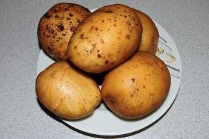 Чем хороша картошка наша?