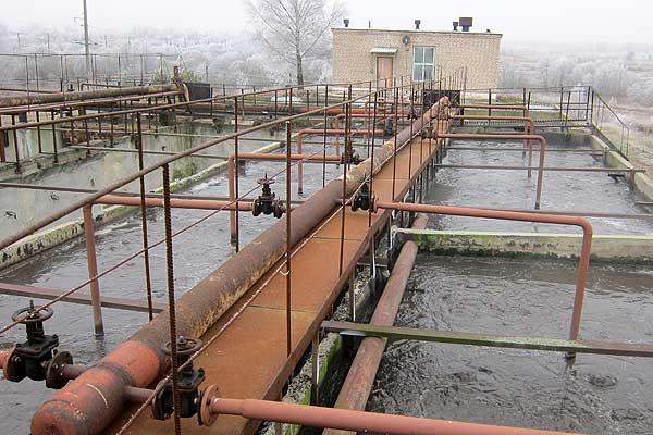 Программа — в действии: в кохановских биопрудах плещется рыба