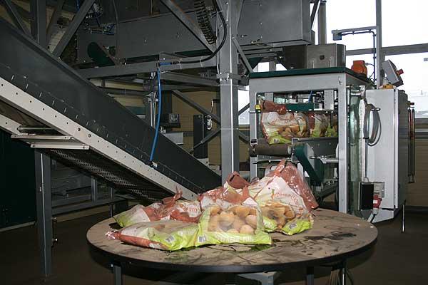 На картофелехранилище консервного завода запущена уникальная для Беларуси производственная линия