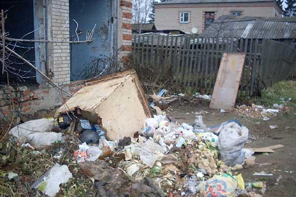 Сбор и вывоз мусора: нарушения выявлены, виновные наказаны, а проблема остается