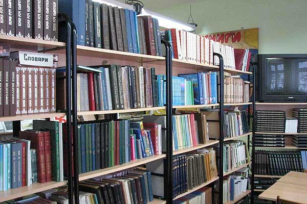 Школьная библиотека нового типа: для реализации своего проекта учащиеся СШ №2 нуждаются в вашей поддержке
