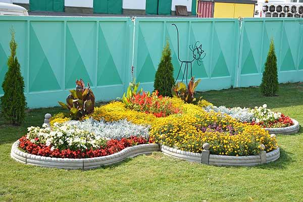 Красоте навстречу: в Толочинском районе определят лучшие цветочные композиции