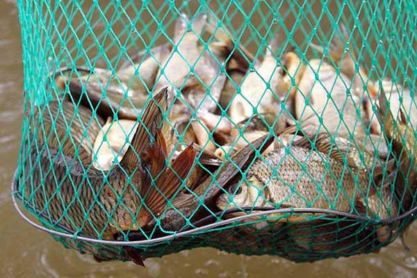 Талачынскія рыбаловы і паляўнічыя замацавалі свой ранейшы поспех