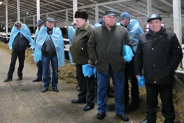 Семинар: чтобы повысить продуктивность, получить вал, надо заниматься поголовьем скота