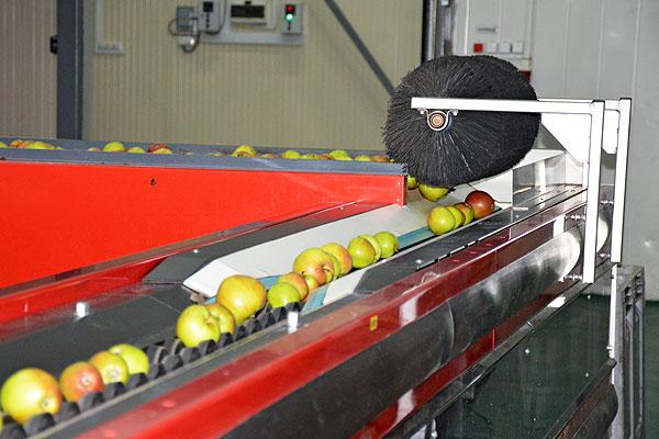 На Толочинском консервном заводе на первый план ставят качество своей продукции