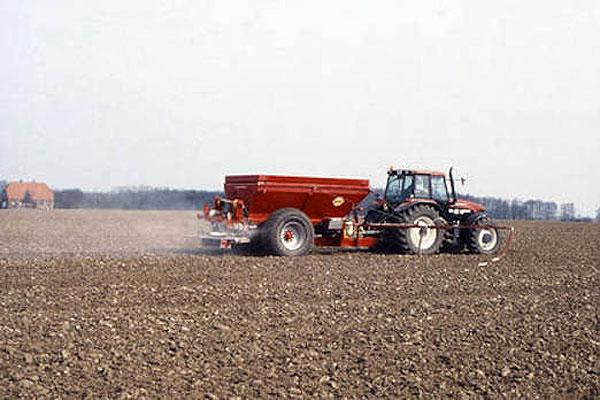 Закладка нового урожая — огромный труд и большая ответственность