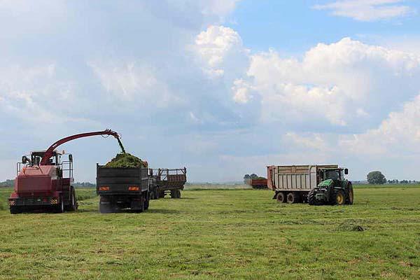 В Толочинском райагросервисе с заданием по кормозаготовке обязательно справятся