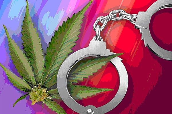 В Толочинском районе остается актуальной проблема употребления наркотиков