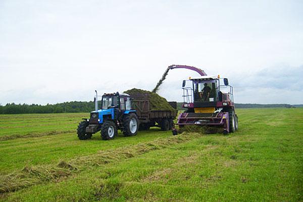 Организация работ приносит свои результаты: славновские механизаторы первыми в Толочинском районе завершили уборку трав первого укоса