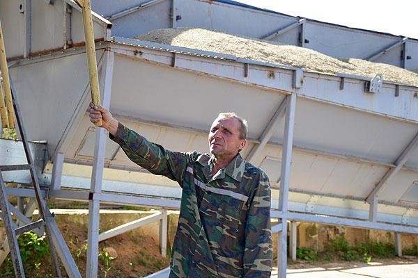 Хлеб Толочинщины: до двухсот тонн зерна за сутки пропускает через сушку Александр Кувеко