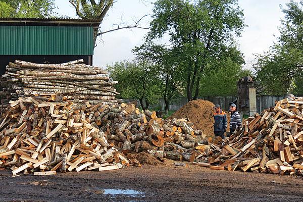 Жители Толочинского района без топлива не останутся