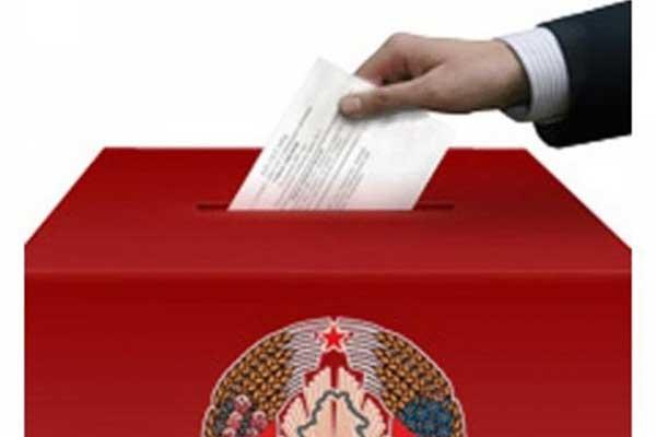 Выборы-2018: в Толочинском районе образованы избирательные округа