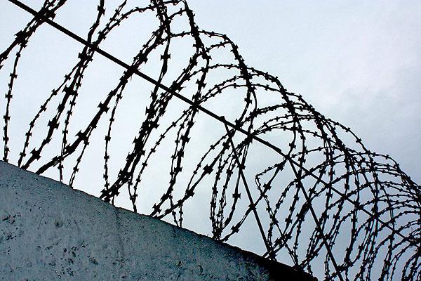 За убийство матери в Толочинском районе мужчина приговорен к 13 годам лишения свободы