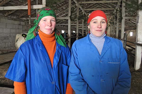 Молодые славновские доярки к ответственности приучены смолоду