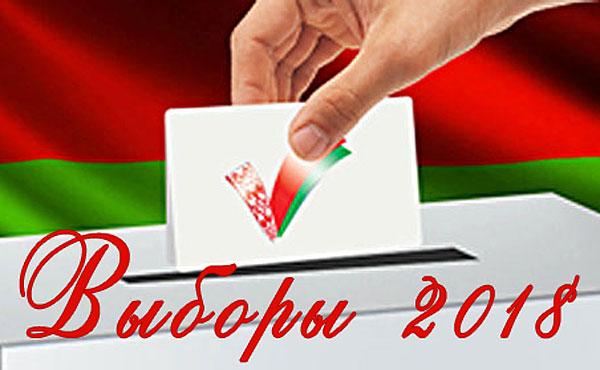 В Толочине зарегистрированы кандидаты в депутаты районного Совета депутатов