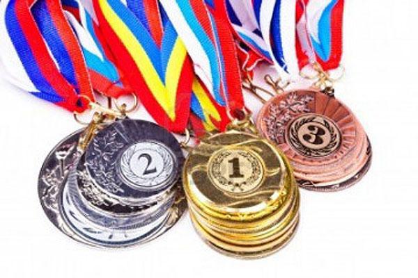 Толочинские борцы стали призерами республиканских и международных соревнований