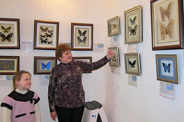 """В музее в Толочине развернута выставка """"Мир бабочек"""""""