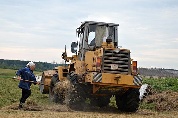 """Где хотели, там сумели: в """"Корольках"""" целенаправленно ведут работу по заготовке кормов"""