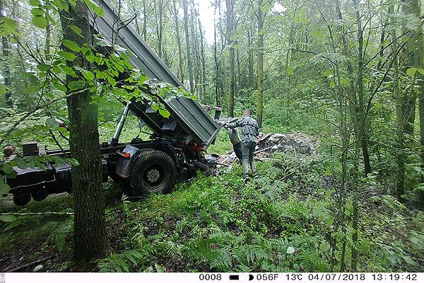На помощь Толочинскому лесхозу пришли фотоловушки