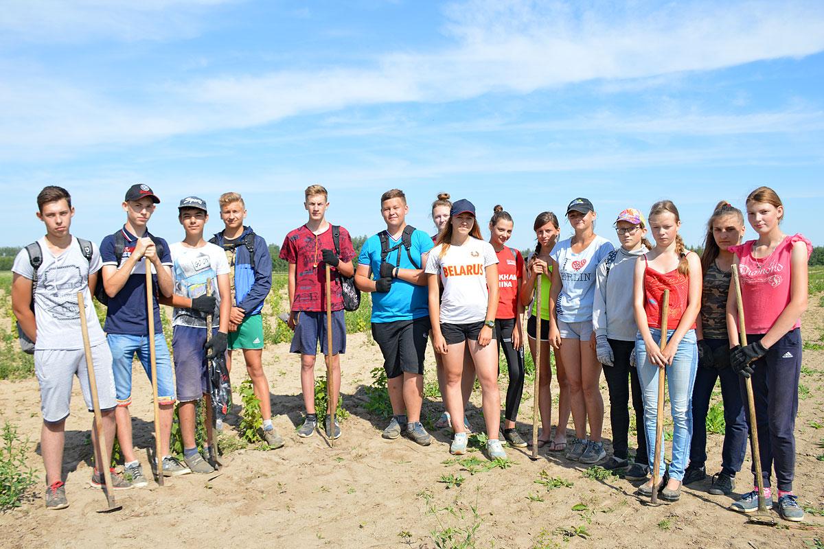 Юные толочинцы в период летних каникул трудятся на благо родного края