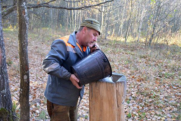 Материальные стимулы приносят зримый результат: в Толочинском районе проводится эксперимент по закреплению охотничьих угодий за первичными коллективами