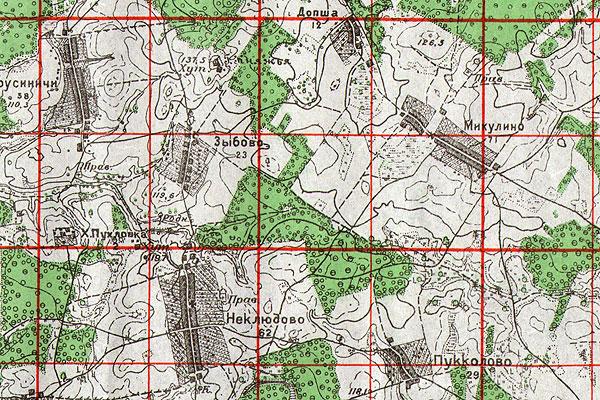 Точка на карте Толочинщины: тайна горы Княжья