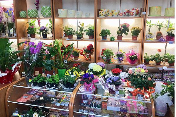 """Готовимся к празднику весны с магазином """"Лучший мир""""!"""