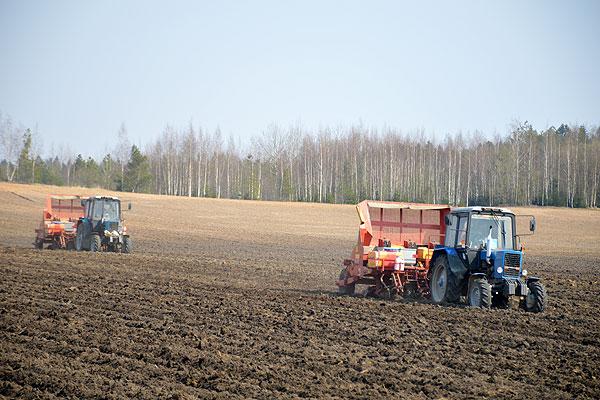На полях Толочинского консервного завода активно ведется сев яровых культур и посадка картофеля