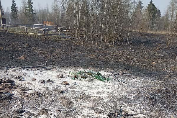 В Коханово сжигание мусора едва не привело к пожару