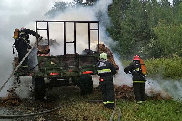 В Толочинском районе огнем уничтожены древесные отходы и сено