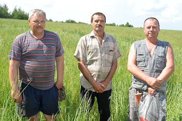 В Толочинском районе продолжается кормозаготовка