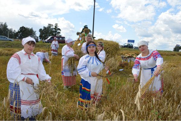 Уборка зерновых стартовала в Толочинском районе
