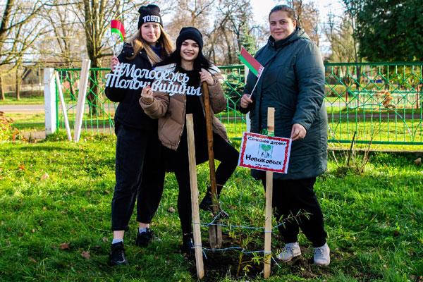 Заложена вторая аллея семейных деревьев в Толочинском районе