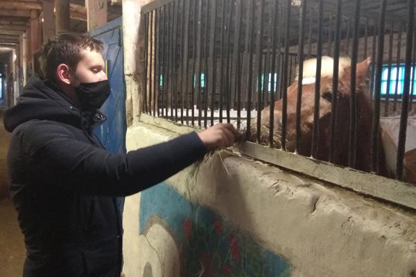 Конно-спортивный клуб «Нива» — место, где учат любить лошадей