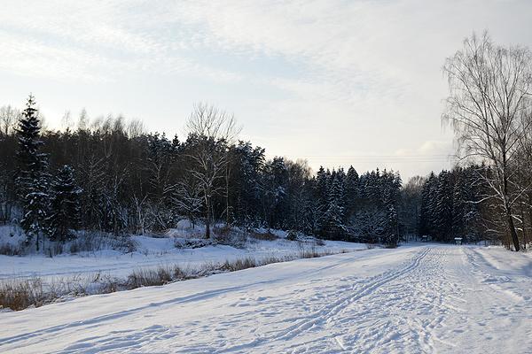 Пришла зима — вставай на лыжи: о зимнем отдыхе в Толочинском районе