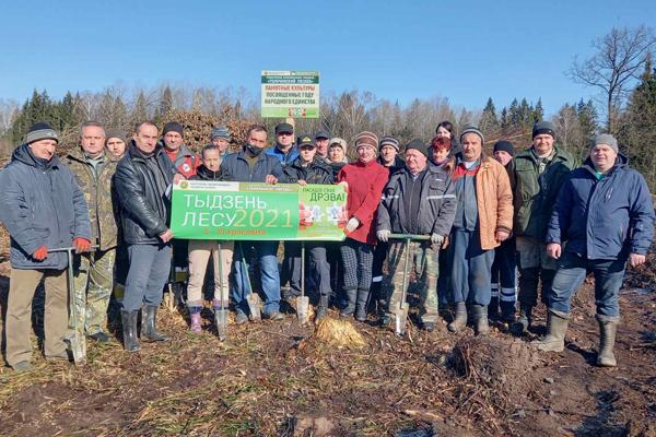 Акция «День леса» состоялась в Толочинском районе (фоторепортаж)